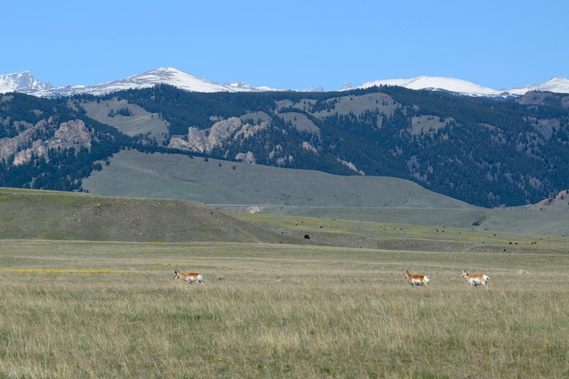 North Ridge Ranch