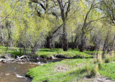 Upper French Creek