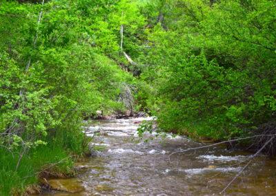 East Pass Creek