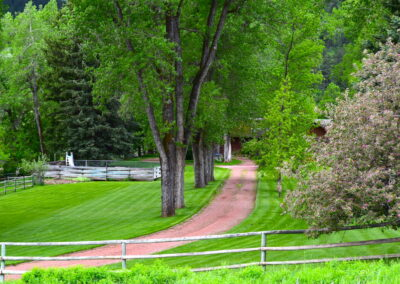 Lodge Driveway