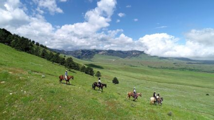 land and ranches