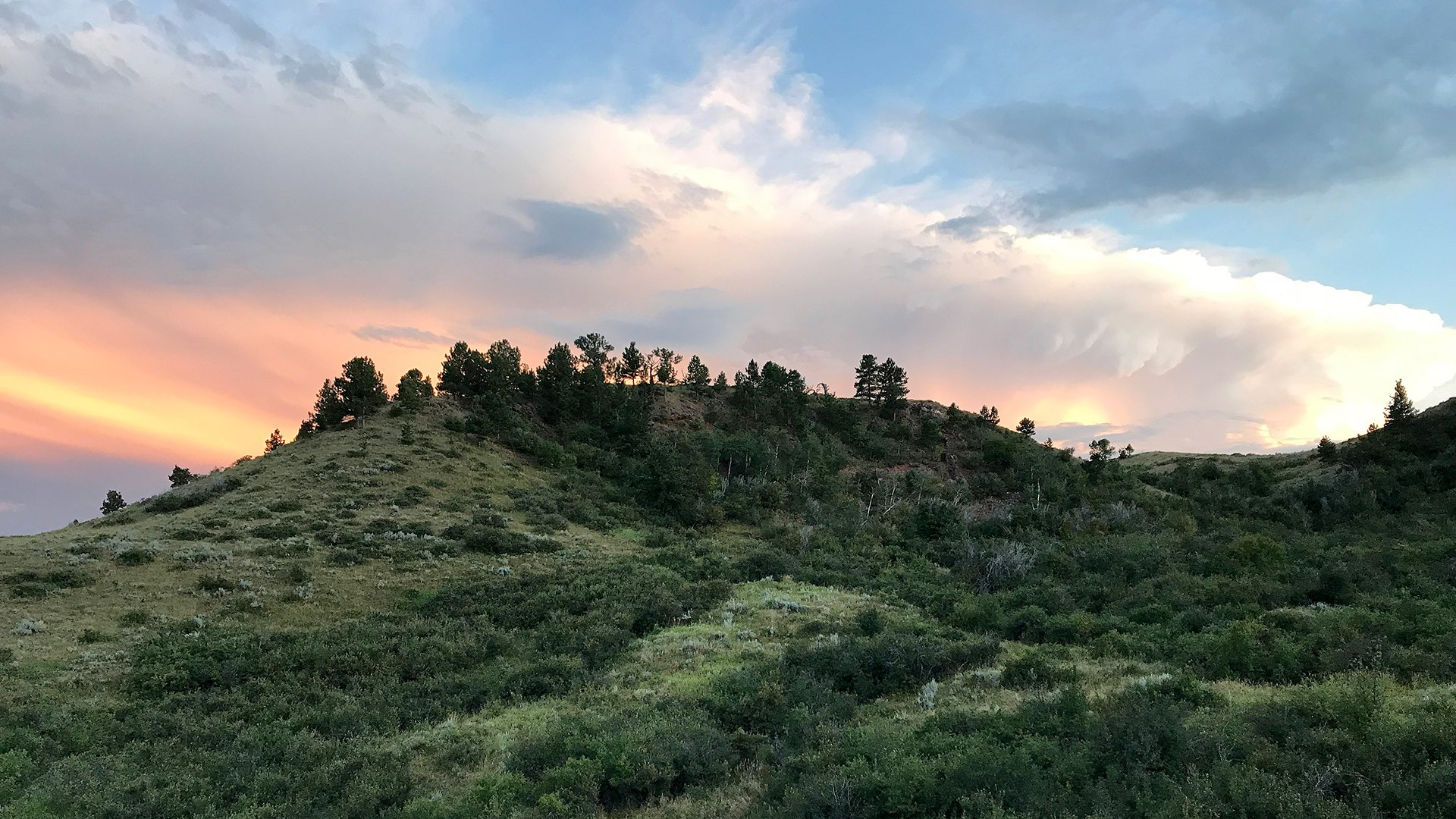 Upper Cat Creek Wyoming Land for Sale