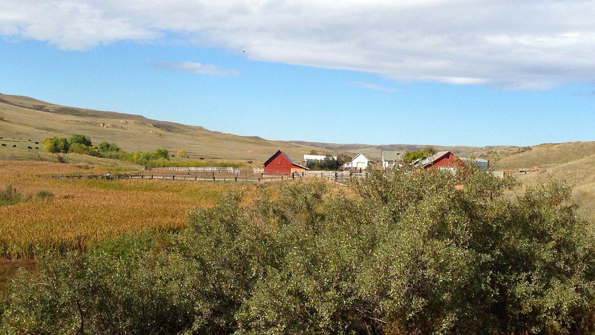 South Rosebud Creek Ranch