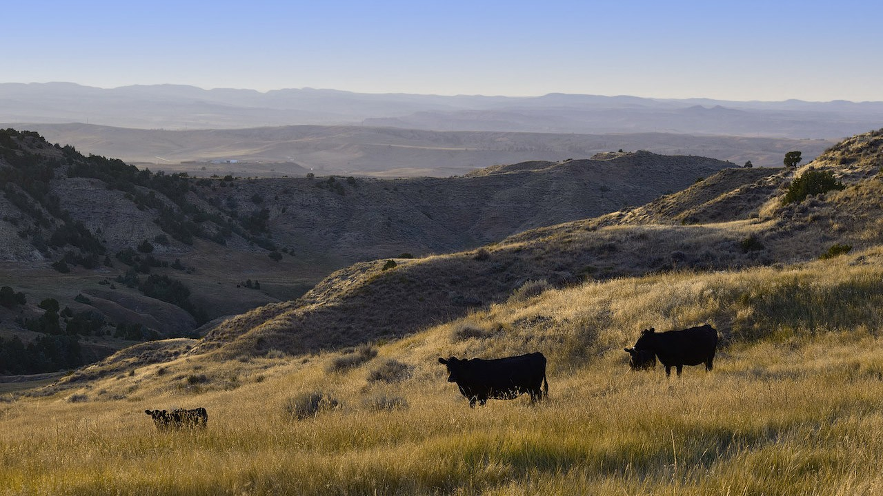 Brinkerhoff Wyoming Ranch for Sale