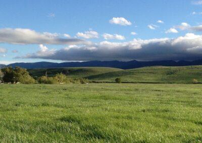 Nickel Ranch