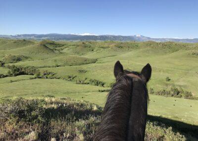 Y Lazy Y Ranch
