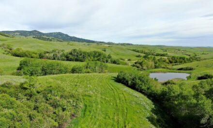 North Lodge Trail Land
