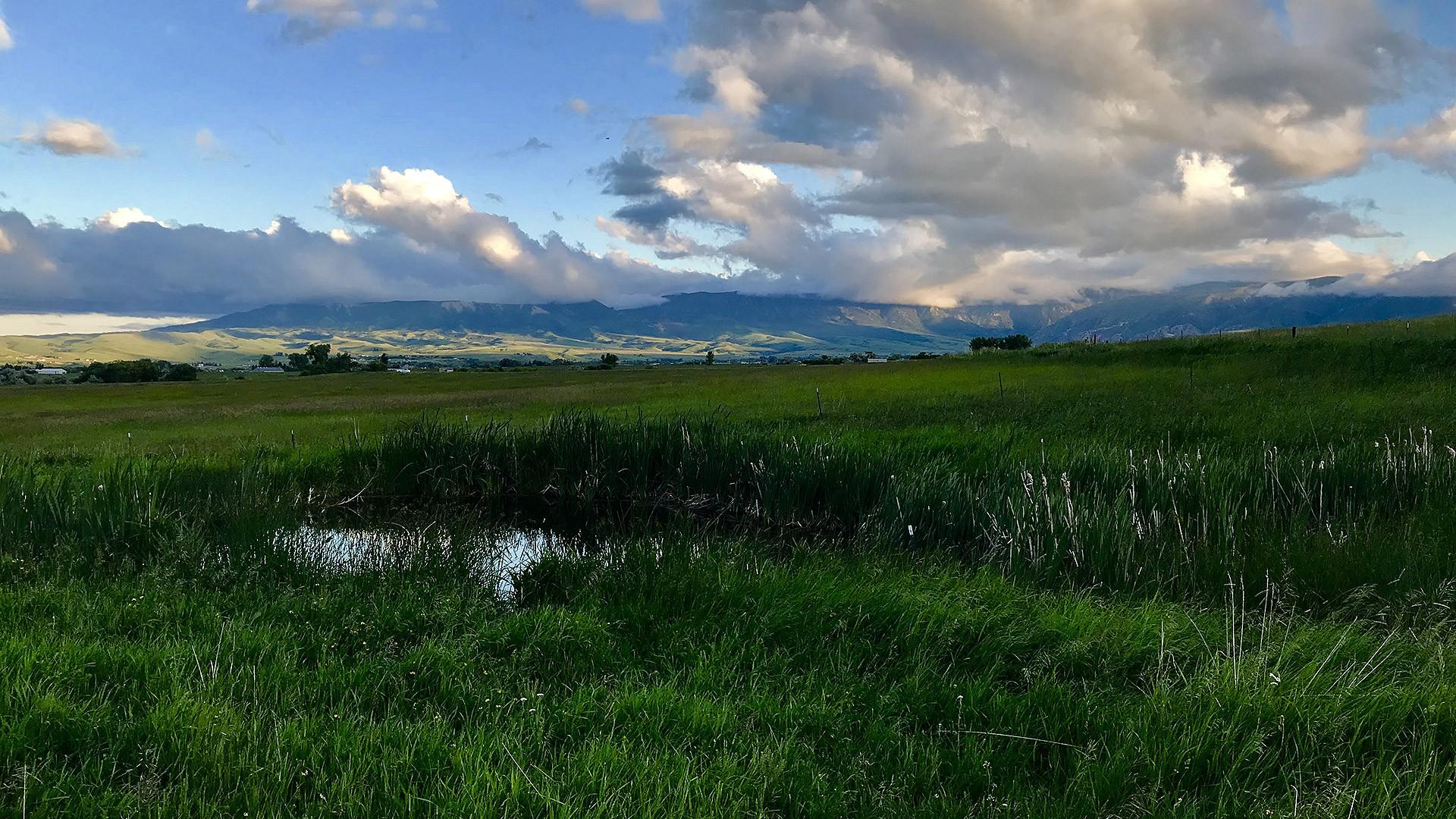 Prairie Spring Ranch