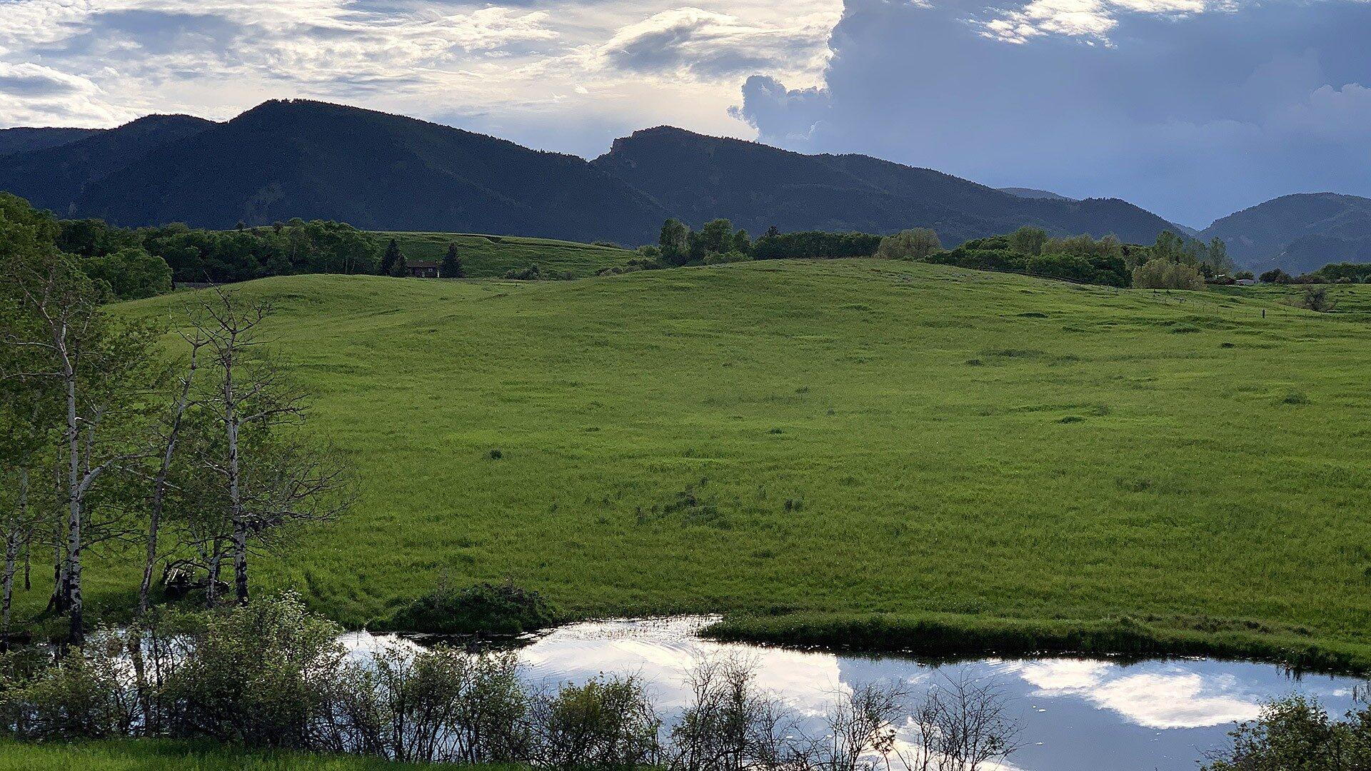 Sullivant Hill Land