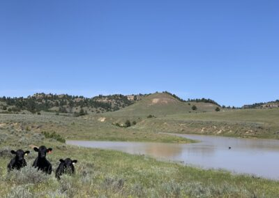 Wyoming Montana land ranches