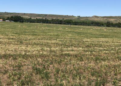 Wyoming Montana Ranches for Sale