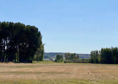 Riverfront pasture land