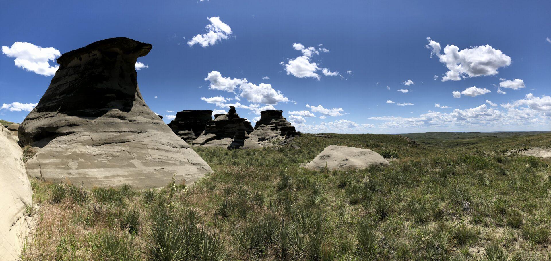 Large Montana Grazing Ranch