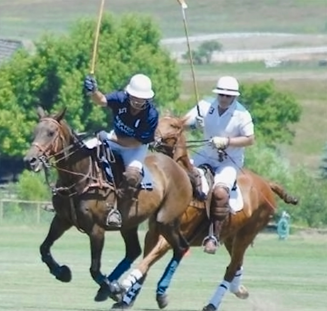 Polo in the Bighorn Mountain Foothills