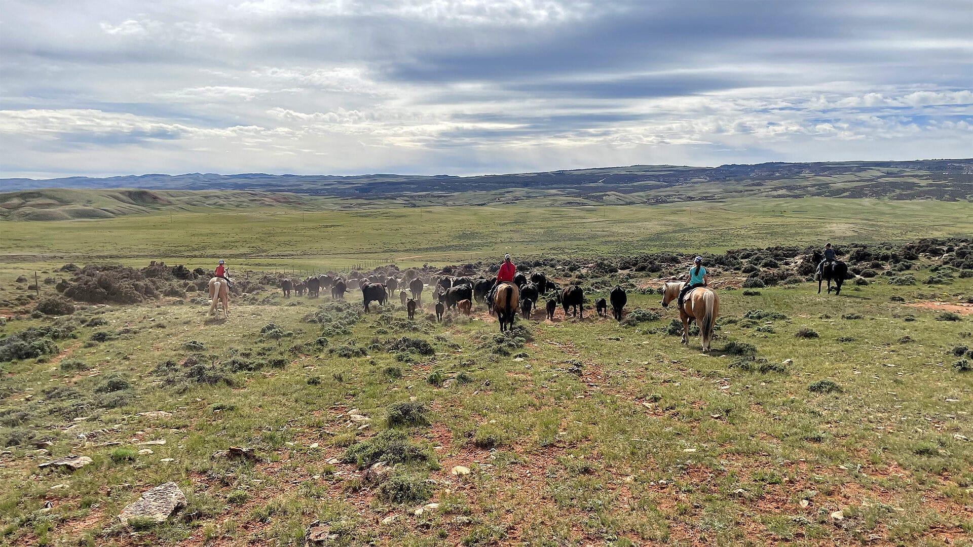 Lost Canyon Ranch