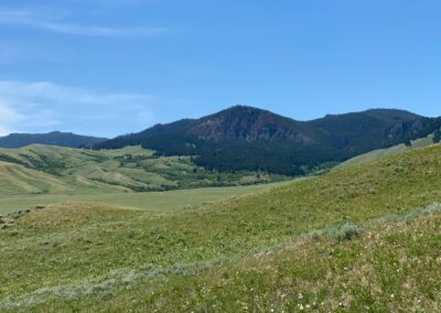 N. Fork Shell Creek Ranch view of Bighorn foothills