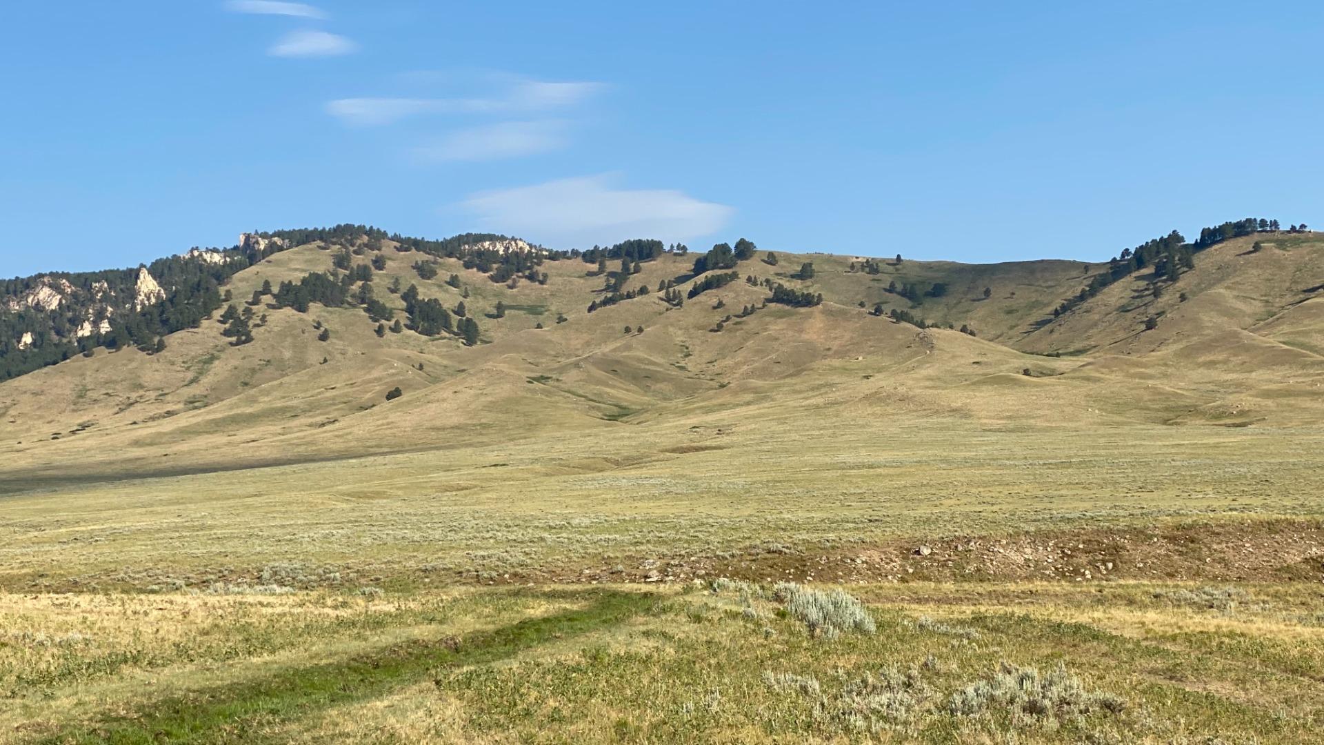 N. Fork Shell Creek Ranch ridge line